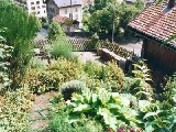 Magnifique chalet ancien à Lucens